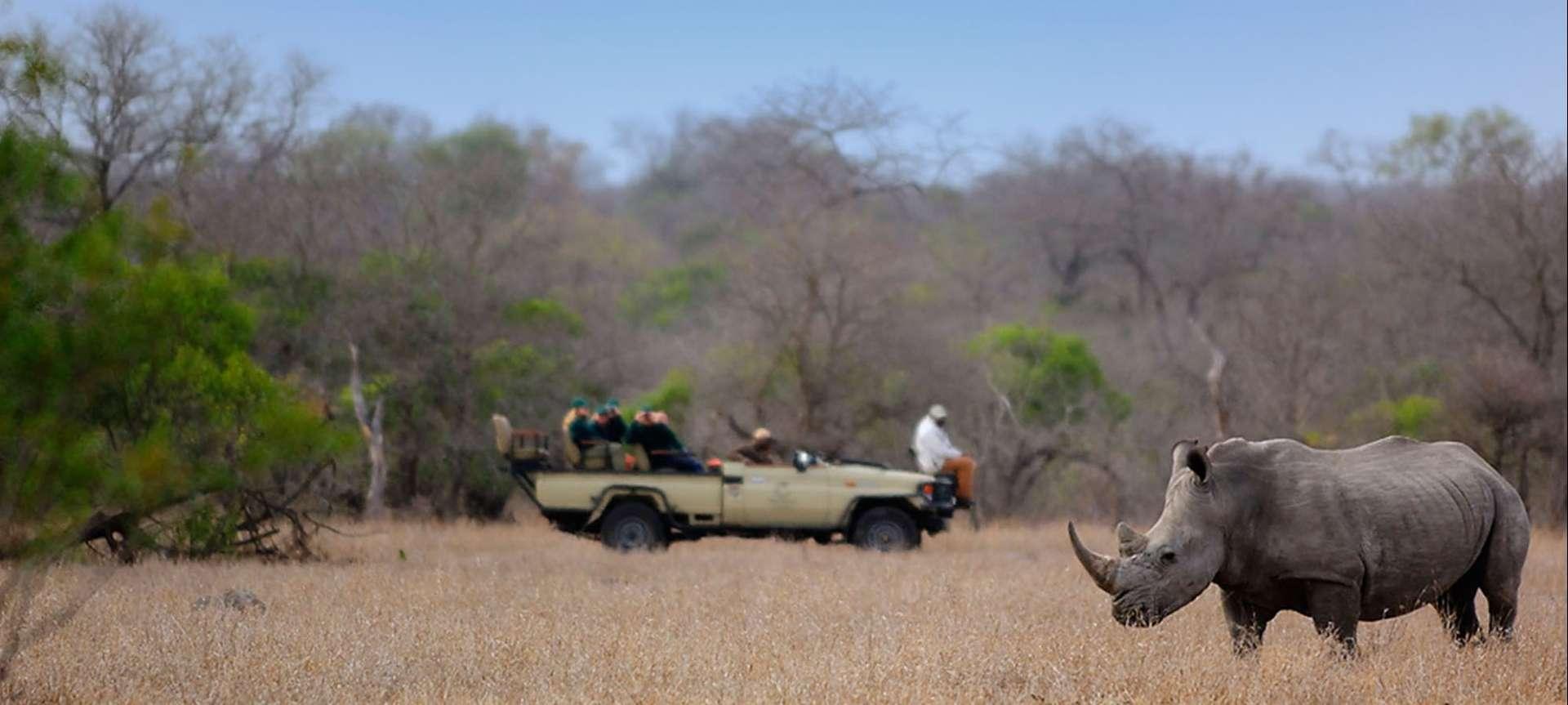 Manyeleti - Africa Wildlife Safaris