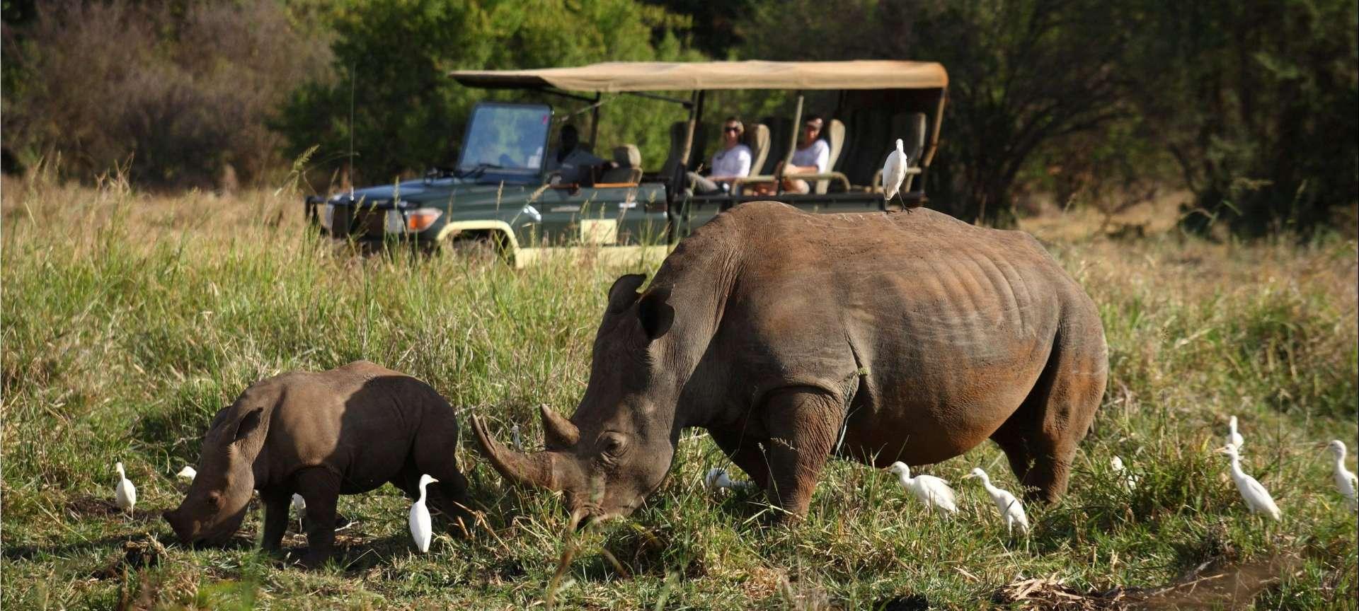 Meru National Park - Africa Wildlife Safaris