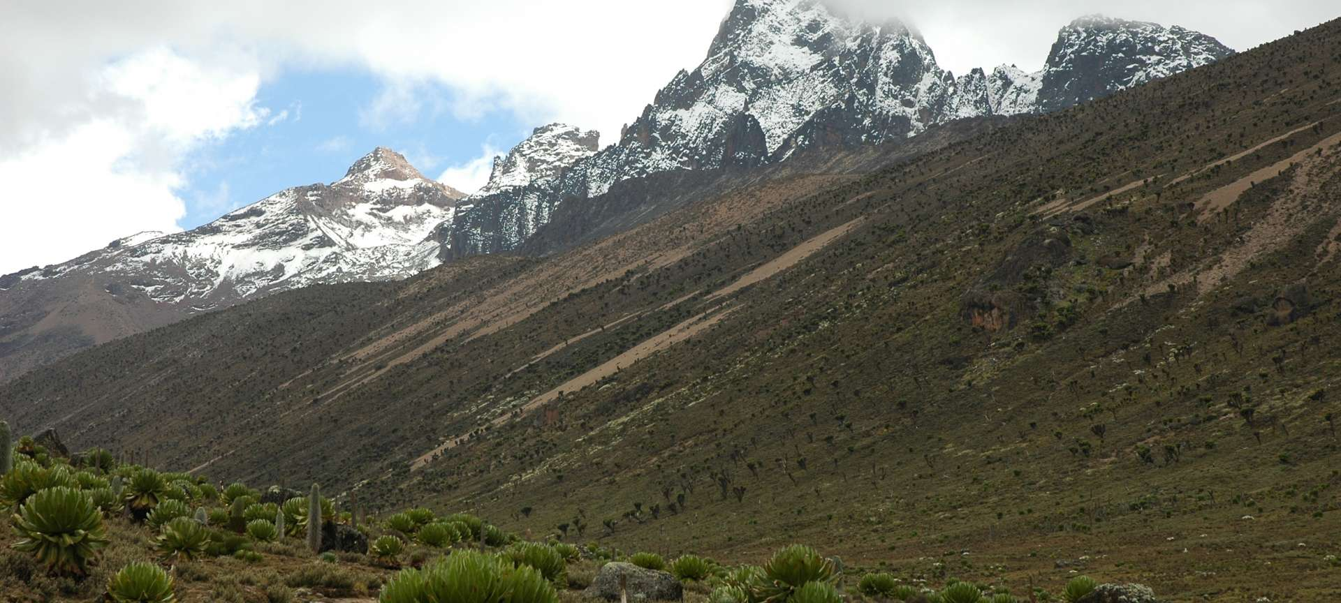 Mount Kenya National Park - Africa Wildlife Safaris