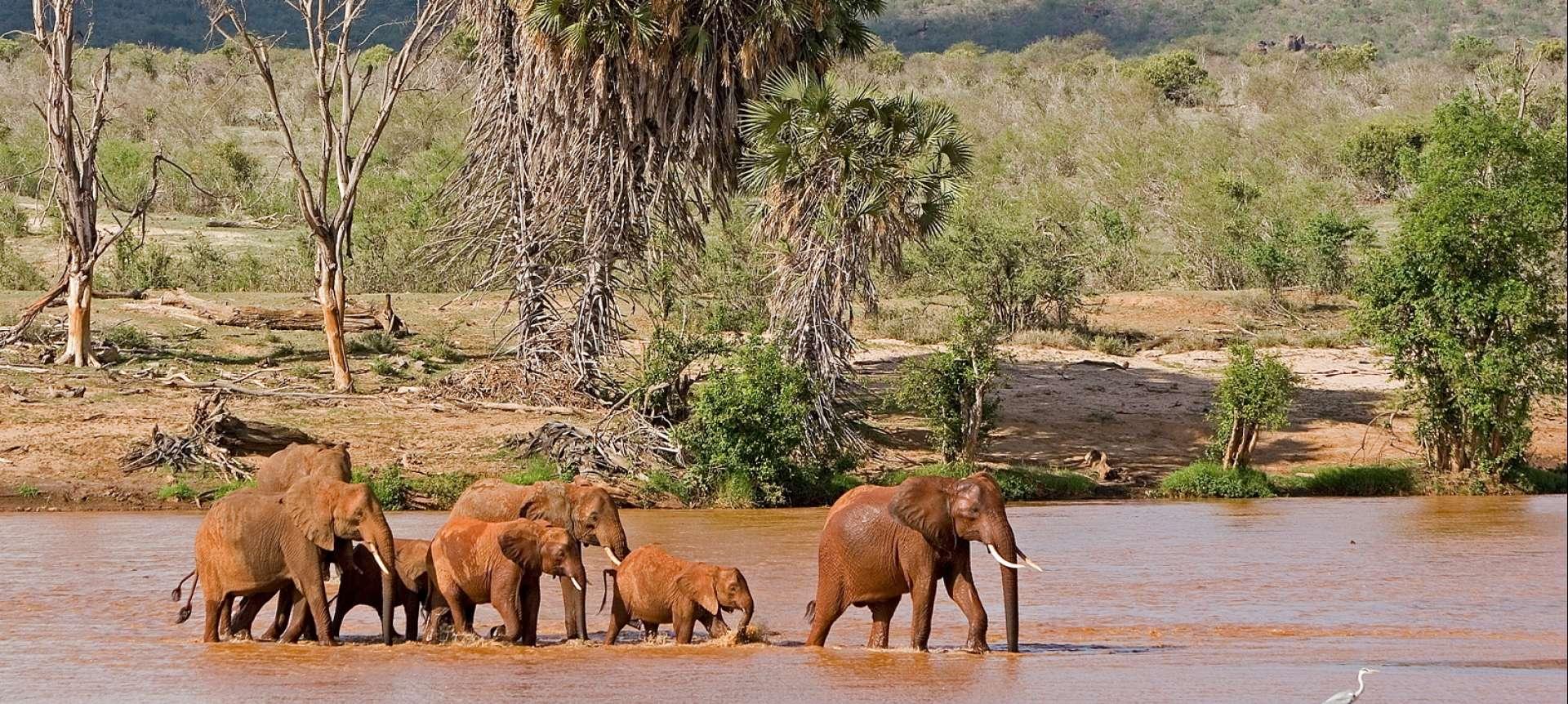Tsavo East and West National Park - Africa Wildlife Safaris