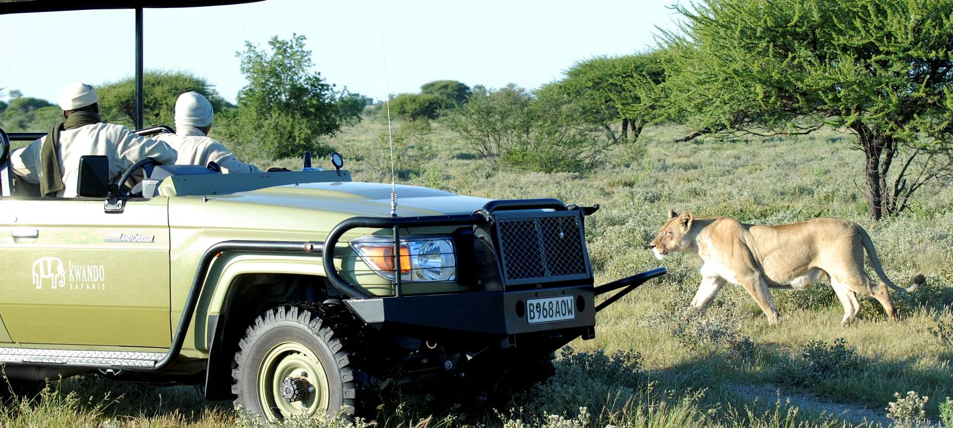 Central Kalahari - Africa Wildlife Safaris