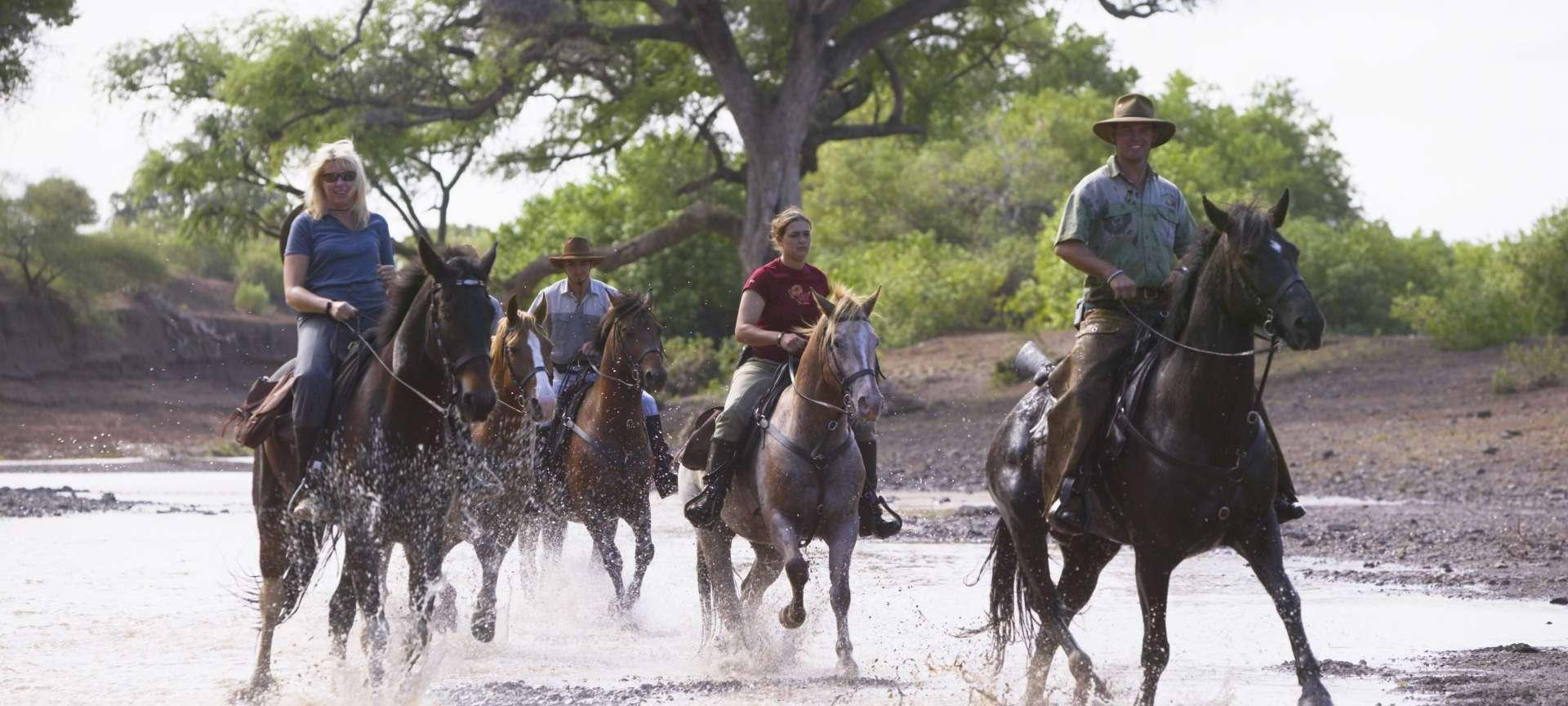 Mashatu Game Reserve - Africa Wildlife Safaris