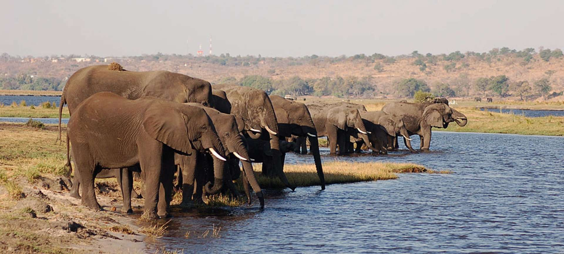 Caprivi Strip - Africa Wildlife Safaris