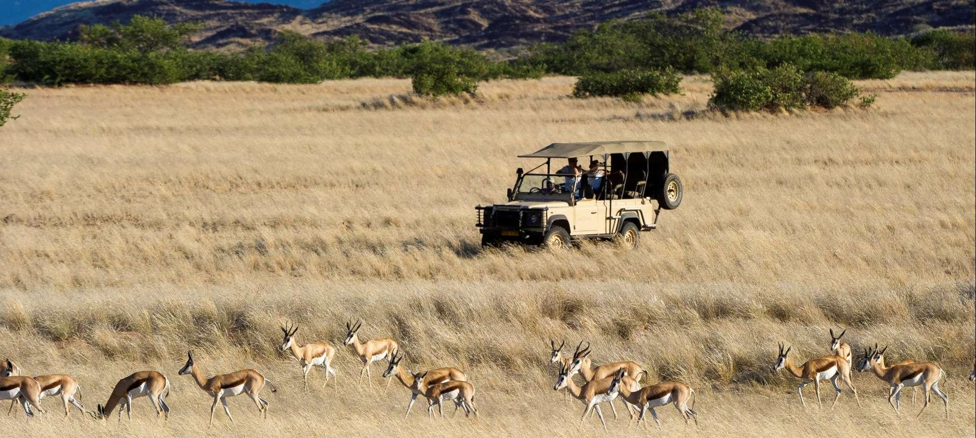 Damaraland - Africa Wildlife Safaris