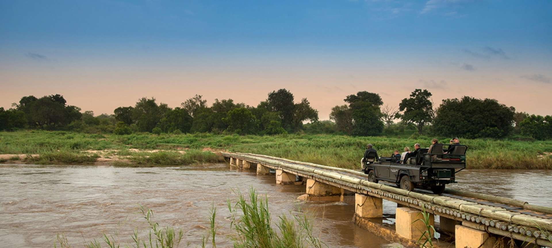 Kruger National Park (park and it's private concessions) - Africa Wildlife Safaris