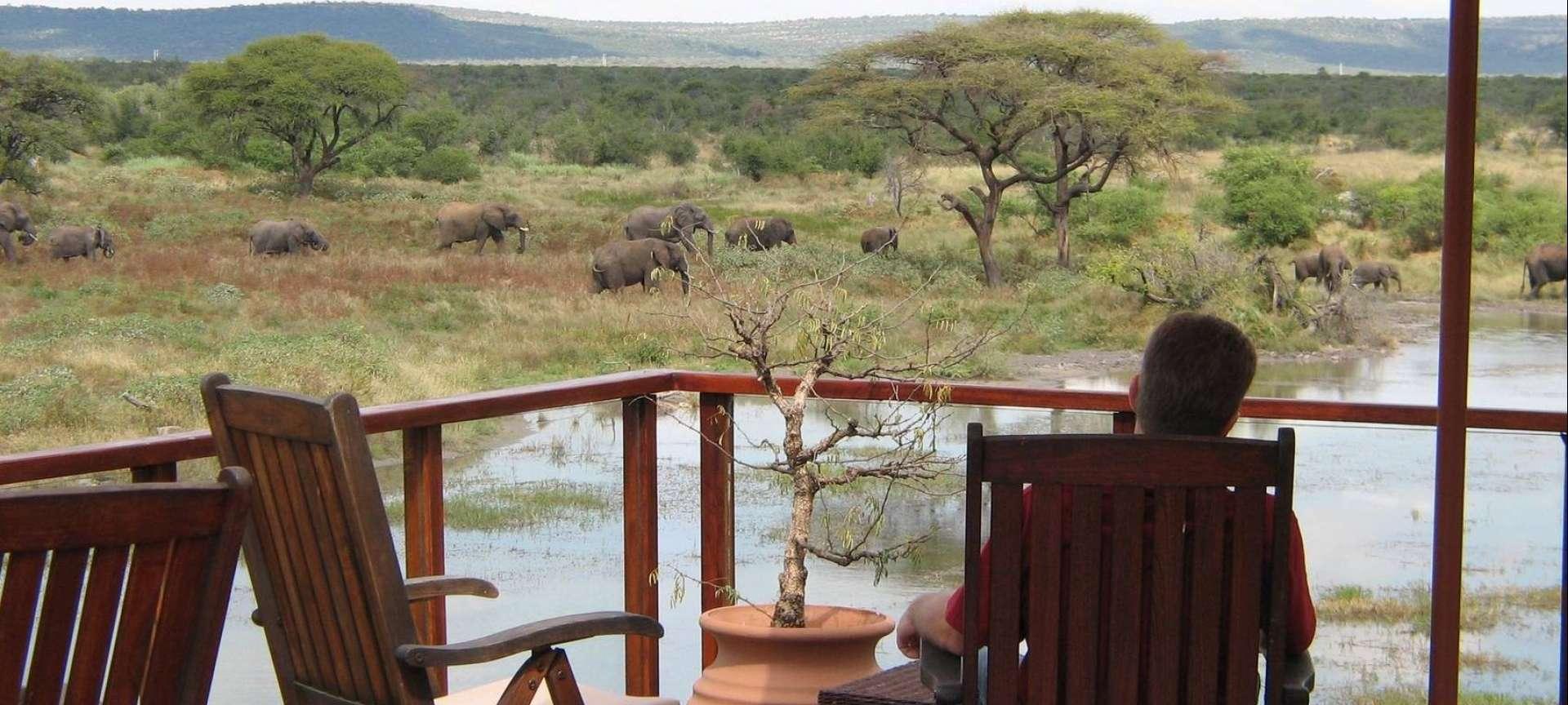 Madikwe Game Reserve - Africa Wildlife Safaris