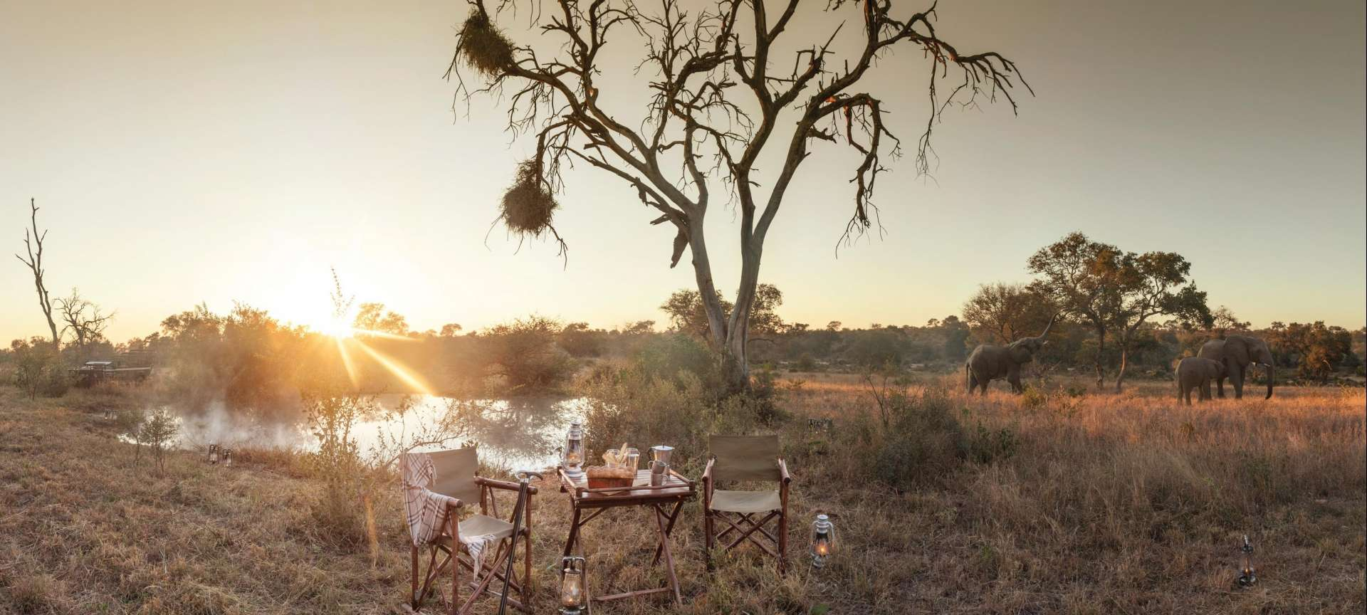Timbavati Game Reserve - Africa Wildlife Safaris