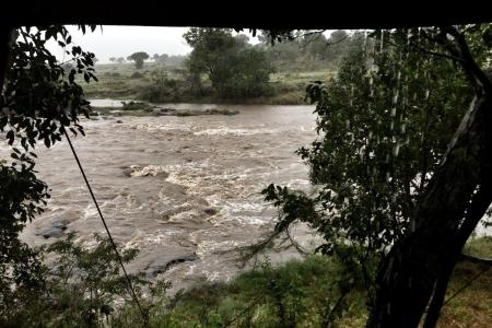 the-mara-river-water-levels-are-high