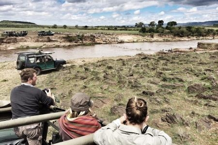 zebra-walking-across-the-mara-river-at-the-fumbi-fumbi-crossing-point