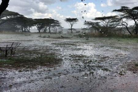 heavy-rain-in-the-southern-serengeti