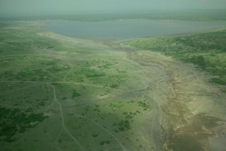 wildebeest-migration-in-ndutu