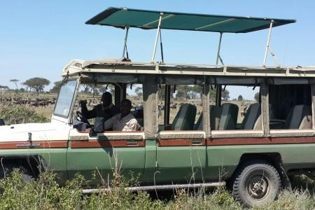 game-drive-in-ndutu