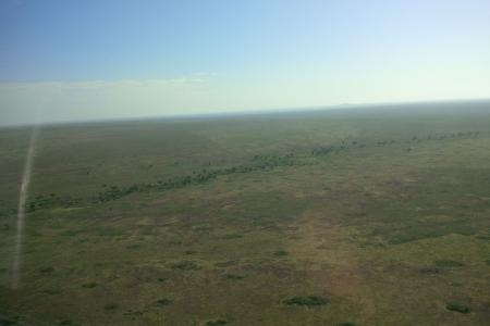 serengeti-from-above