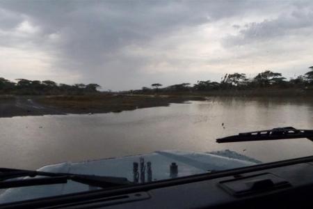 rain-in-ndutu