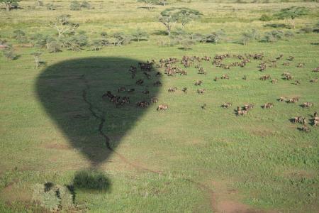 Hot air ballooning in Seronera