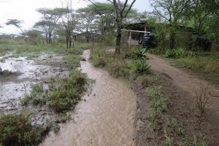 Heavy rain in Ndutu