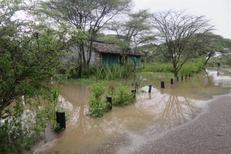 The rain at the Ndutu Safari Lodge