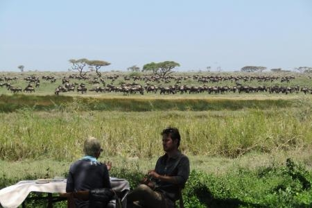 The herds are close to Asilia Namiri Plains Camp